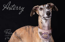Charger l'image dans la galerie, Greyhound Collar