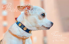 Load image into Gallery viewer, Chic Dog Collar for toy breeds