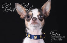 Load image into Gallery viewer, Chihuahua dog collar