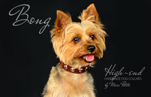 Load image into Gallery viewer, Yorkie dog collar