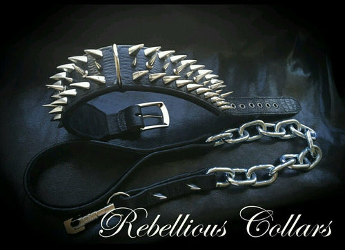 Brutal Rebellious Dog Collar with Spikes & Thornes