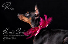 "Load image into Gallery viewer, ""Rio"" - Luxury Dog Bow Tie"