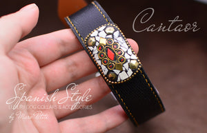 Exclusive dog collar in black leather and golden settings
