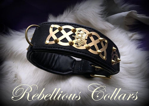 Celtic Rebellious Leather Dog Collar with Spikes