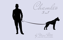 Charger l'image dans la galerie, Chamleo - 3 in 1 Leather Dog Leash