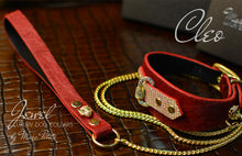 Load image into Gallery viewer, Jewelled Luxury Dog Collar with Leash in red Fur leather & Gold Panther