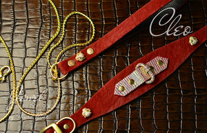 Luxury Set Dog Collar & Dog Chain Leash in red fur leather