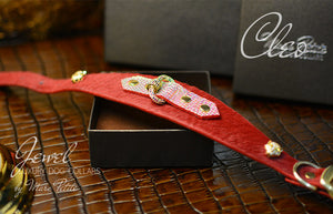 Bing Dog Collar in Red & Gold