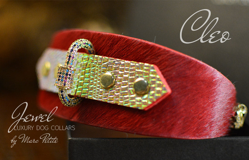 Jewelled Luxury Dog Collar in Red & Gold