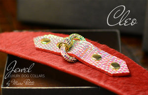 Luxury Dog Collar in Red & Gold