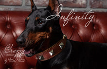 Load image into Gallery viewer, Leather Dog Collar with spikes for strong dogs like Doberman