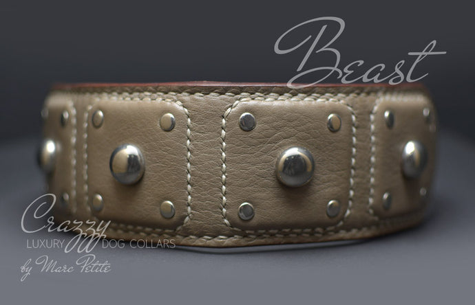 High-End Leather Dog Collar with Spikes for extra large dogs