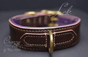Luxury Dog Collar with soft pad
