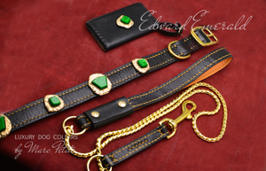 Exclusive Dog Collar, leash and bag holder