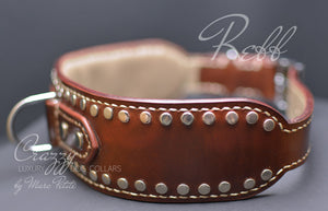 Collar with rivets for large dogs