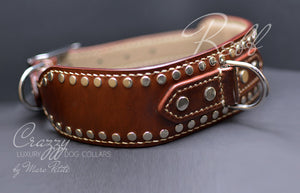 Extra Large Leather Dog Collar Crazzy Rebb