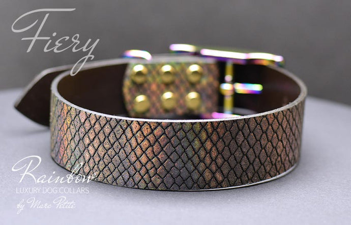 Holographic leather dog collar