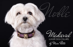 Luxury dog collar