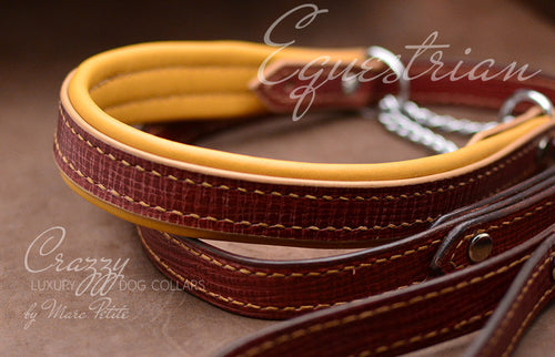 Elegant, extra strong & durable martingale collar for middle, large & extra large breeds