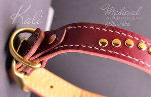 Burgundy dog collar