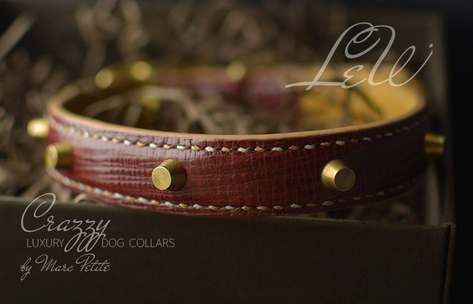 High-End Leather Dog Collar with Spikes