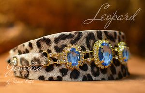 Leopard dog collar