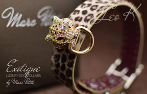 Exotic Leopard Dog Collar