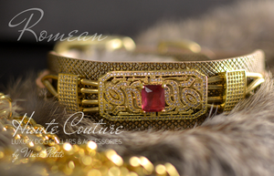Gold dog collar and leash