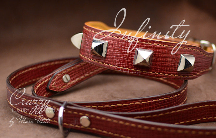 Elegant Luxury Dog Collar