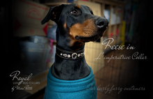 Load image into Gallery viewer, Doberman dog collars