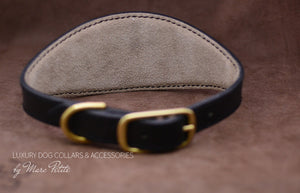 Dog Collar with soft pad