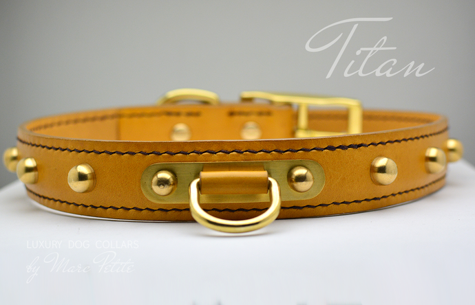 High-end Dog Collars