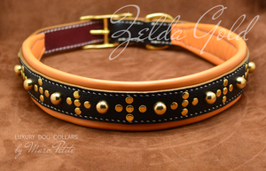 Dog collar for extra large dogs