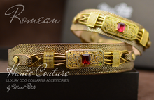 Charger l'image dans la galerie, Designer Dog Collar - Gold Leather