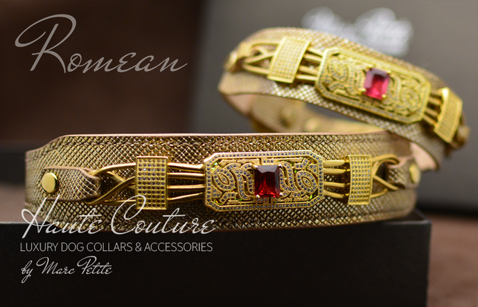 Designer Dog Collar - Gold Leather