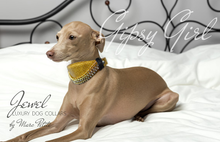 Load image into Gallery viewer, Martingale Gold Dog Collar for Whippet