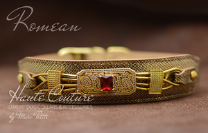 Luxury Dog Collar - Golden