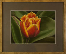 Load image into Gallery viewer, The Tulip