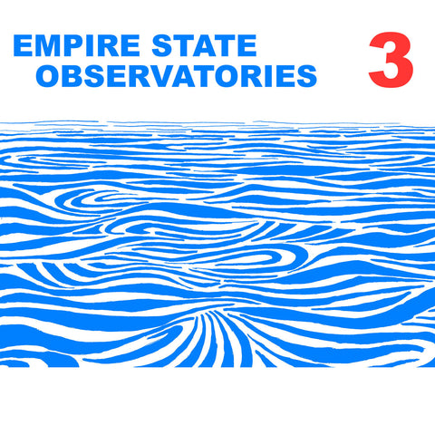 Sean Curley - Empire State Observatories 3