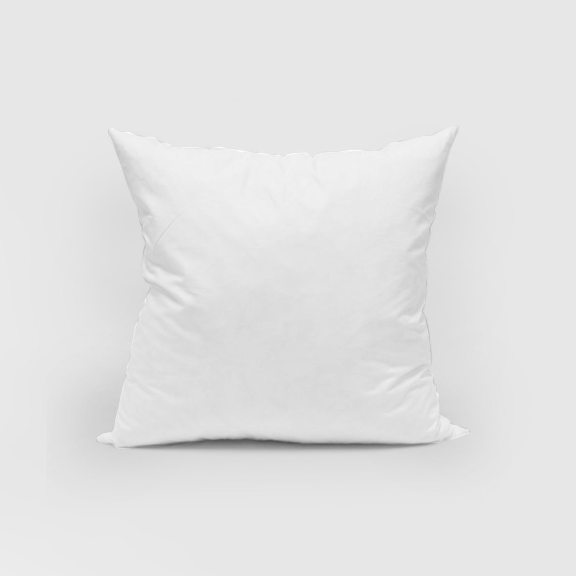 Feather European Pillow Inner