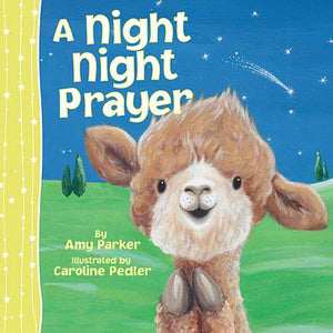 Night Night Prayer-Board Book
