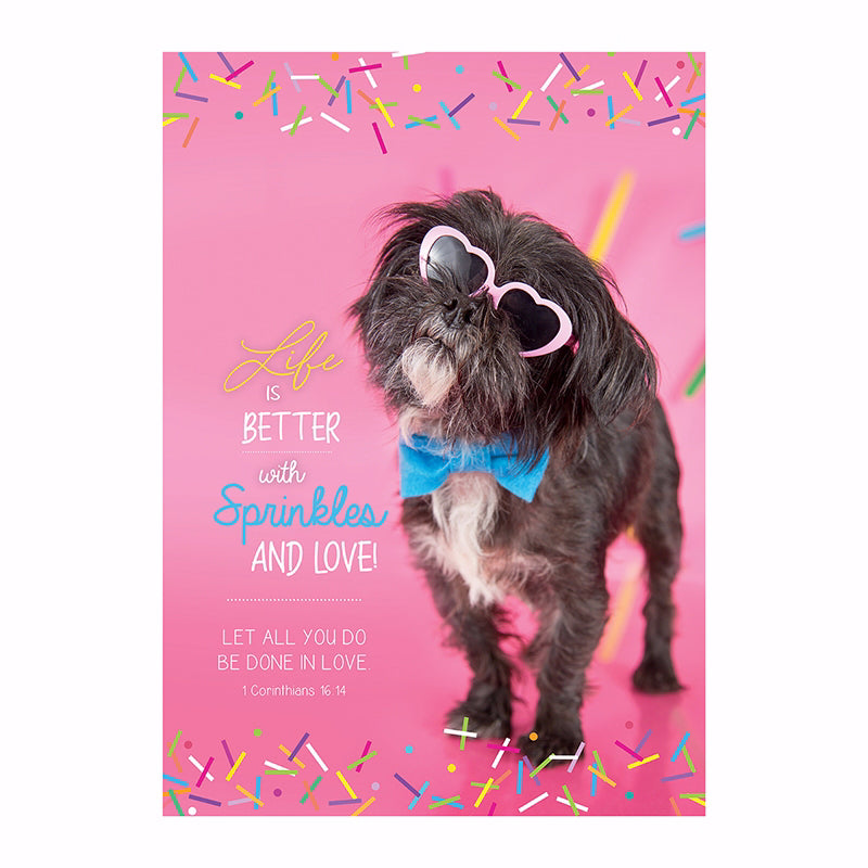 "Poster-Large-Life Is Better With Sprinkles (13.5"" x 19"")"