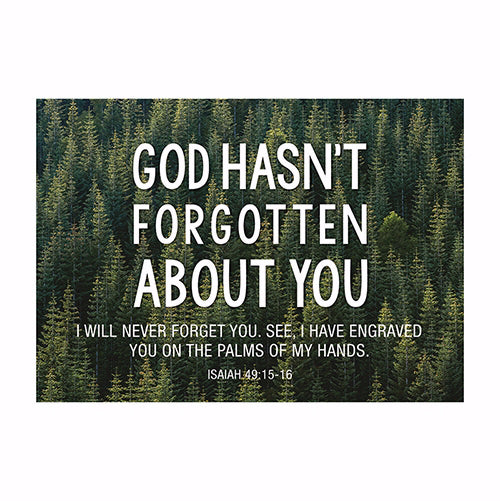 Postcard-God Hasn't Forgotten You (6 x 4.25) (Pack Of 6)