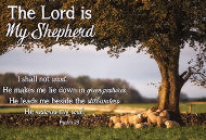 "Poster-Small-The Lord Is My Shepherd (13.5"" x 9"")"