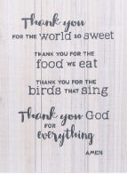 Wall Plaque-Thank You  God (9.5 x 12.5)