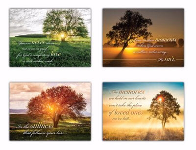 Card-Boxed-Be Still And Know Assorted Sympathy (NIV) (Box Of 12)