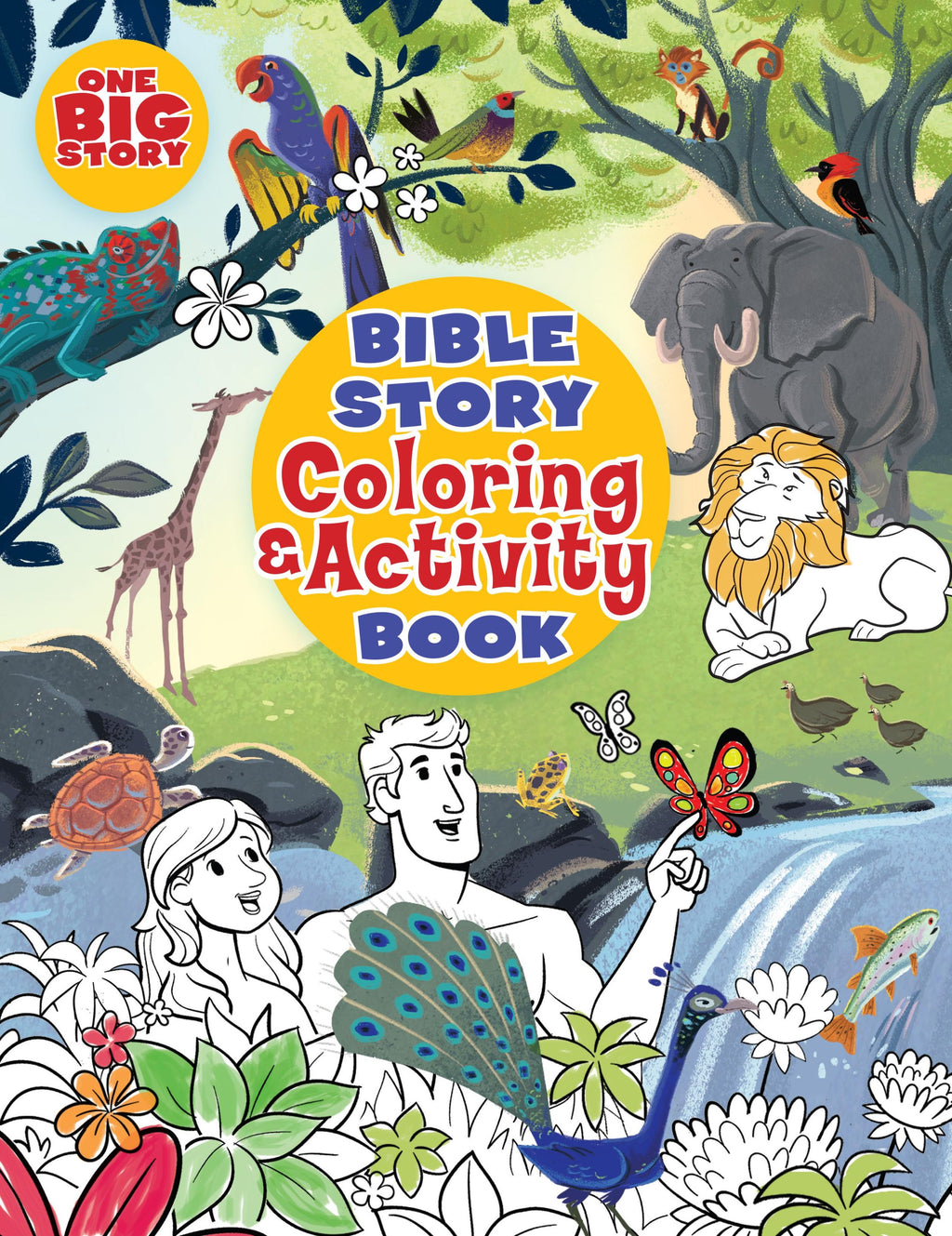 Big Picture Interactive Bible Story Coloring And Activity Book