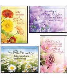 Card-Boxed-Sunny Wishes Assorted Get Well (KJV) (Box Of 12)