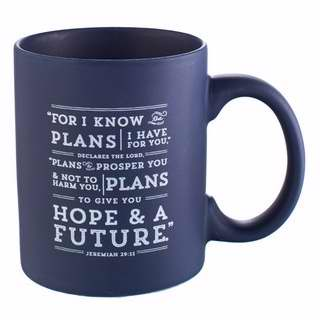 Mug-I Know The Plans-Navy Blue