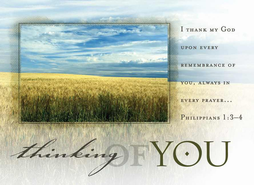 Postcard-Thinking Of You-Field (Philippians 1:3-4 KJV) (Pack Of 25)